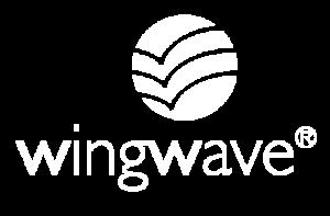 Rüdiger Böhm Motivation und Coaching Experte für Veränderung Wingwave Trainer